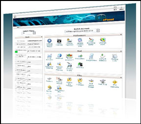 Dedicated Web Hosting Server with Cpanel